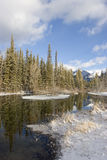 пруд 2 снежный стоковое изображение