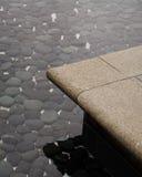 пруд Стоковое Фото