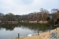 Пруд внутри дворца area2 Changgyeong Стоковое Изображение RF