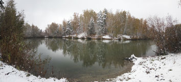 Пруд в лесе в зиме Стоковая Фотография