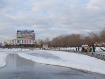 Пруд в зиме Стоковое Изображение RF