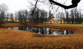 Пруд в парке Стоковое Изображение