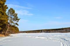 Пруд зимы Стоковые Изображения