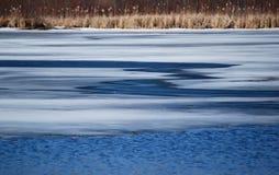 Пруд зимы Стоковое фото RF