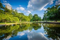 Пруд лилии на парке Bushnell, в Hartford, Коннектикут Стоковое Фото