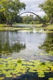Пруд и мост стоковая фотография rf