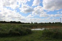 Пруд и облако Стоковая Фотография RF