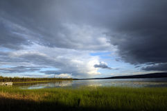 Пруд края луга Стоковые Фотографии RF