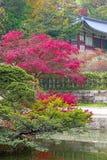 Пруд на парке Huwon, секретный сад Buyeongji, дворец Changdeokgung Стоковая Фотография RF