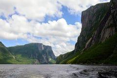пруд ручейка западный Стоковое Фото