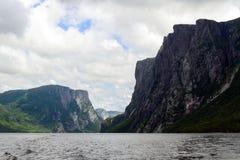 пруд ручейка западный Стоковые Изображения