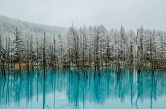 Пруд сини Biei Стоковая Фотография RF