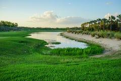 пруд тропический Стоковые Изображения