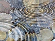 пруд Стоковые Изображения RF