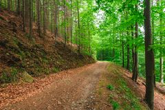Прямая дорога на наклоне горы Стоковые Изображения