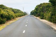 Прямая дорога повсеместно в кусты Стоковые Фото