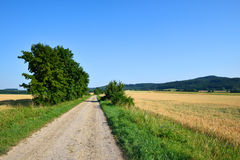 Прямая подсобная дорога в середине полей стоковые изображения
