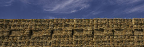 Прямоугольные стога сена Стоковая Фотография RF