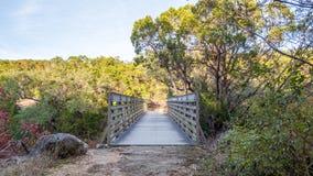 Прямо на взгляде белого стального моста через сухое ущелье в лесе покрашенном падением стоковые изображения