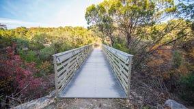 Прямо на взгляде белого стального моста через сухое ущелье в лесе покрашенном падением стоковое изображение