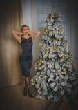 Пряная девушка в черном платье на Рожденственской ночи самостоятельно Стоковые Изображения RF