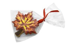 Пряник в форме кленового листа в прозрачном пакете изолированном на белизне стоковая фотография