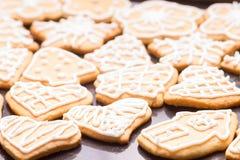 Пряник заморозил печенья Стоковая Фотография RF