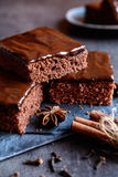 Пряник какао с шоколадом стоковое фото rf
