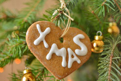 Пряник на рождественской елке Стоковое Изображение