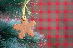 Пряник формы снежинки на рождественской елке Стоковое Изображение RF