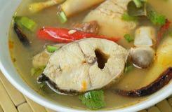 Пряные кипеть рыбы головы змейки и гриб соломы в супе Tom yum на шаре стоковая фотография