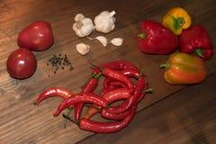 пряные овощи Стоковая Фотография