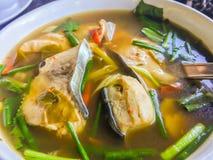Пряные рыбы Tom yum с тайскими ингридиентами травы Горячие пряные и кислые рыбы Тома Yum и суп с травами, тайская местная еда мор стоковое изображение rf