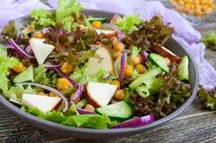 Пряный здоровый салат свежих зеленых цветов, красный лук, нуты, копченый сыр Стоковое Изображение RF