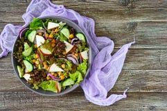 Пряный здоровый салат свежих зеленых цветов, красный лук, нуты, копченый сыр Стоковая Фотография RF
