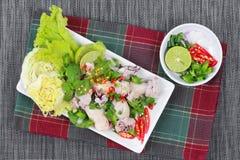 Пряный и кислый смешанный салат травы с обручем кальмара семенил свинину Взгляд со стороны Стоковое фото RF