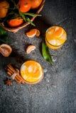Пряный коктеиль tangerine зимы стоковая фотография rf