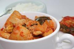 Пряный корейский цыпленок Стоковые Изображения