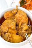 Пряный корейский цыпленок Стоковые Фотографии RF