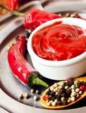 Пряный домодельный кетчуп Стоковое фото RF