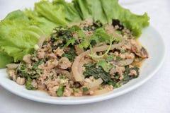 Пряный салат свинины Стоковое Изображение RF