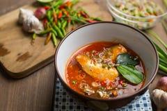 Пряный салат скумбрий в томатном соусе Стоковые Изображения RF