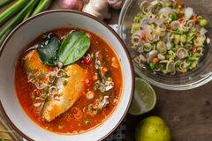 Пряный салат скумбрий в томатном соусе Стоковое Изображение RF