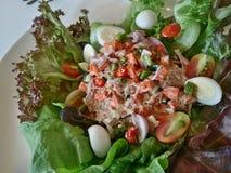 Пряный салат с мясом тунца в еде меню Таиланда Стоковые Изображения RF