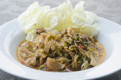 Пряный семенить салат мяса Стоковые Фотографии RF
