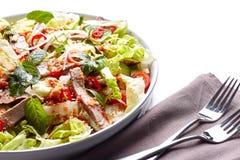 Пряный тайский салат с говядиной и зелеными травами Стоковое Изображение RF