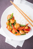 Пряный цыпленок с овощами (зеленые фасоли и красный пеец) и рисом Стоковые Фото