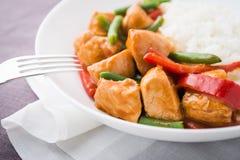 Пряный цыпленок с фасолями овощей зелеными и красным перцем и рисом Стоковые Изображения