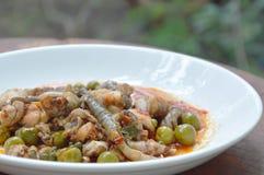 Пряный stir зажарил мясо лягушки и карри баклажана на плите Стоковые Изображения RF