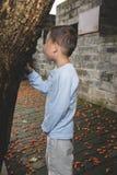 Прятать мальчика стоковое фото rf